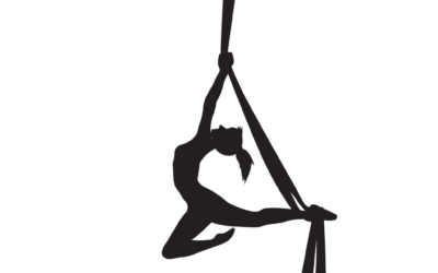Aerial Arts Summer Camp